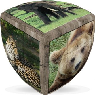 Animaux sauvages 3x3x3
